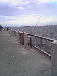 名古屋港海釣り公園